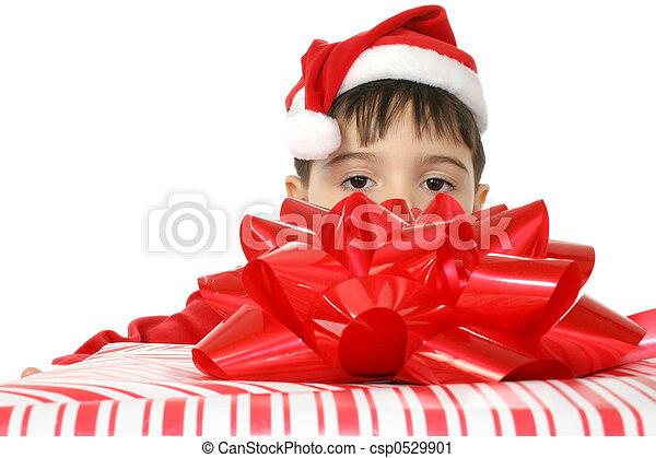 クリスマスの ギフト - csp0529901