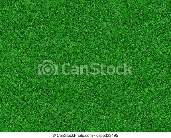 クローズアップ, 春, イメージ, 緑, 新たに, 草 - csp5323495