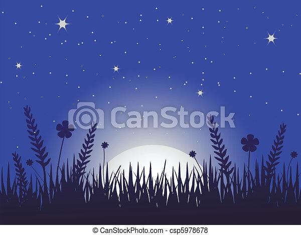 ケシ, 牧草地, 夜 - csp5978678