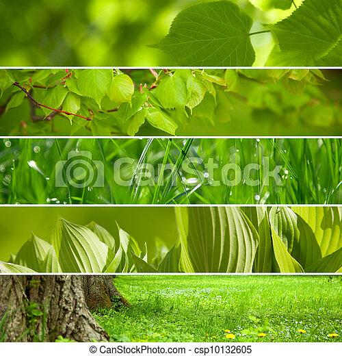コラージュ, バックグラウンド。, 緑, 自然 - csp10132605