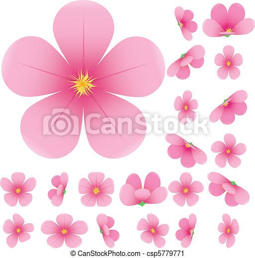 コレクション, 花, セット, イラスト, ベクトル, さくらんぼ, ピンク, 花, sakura - csp5779771