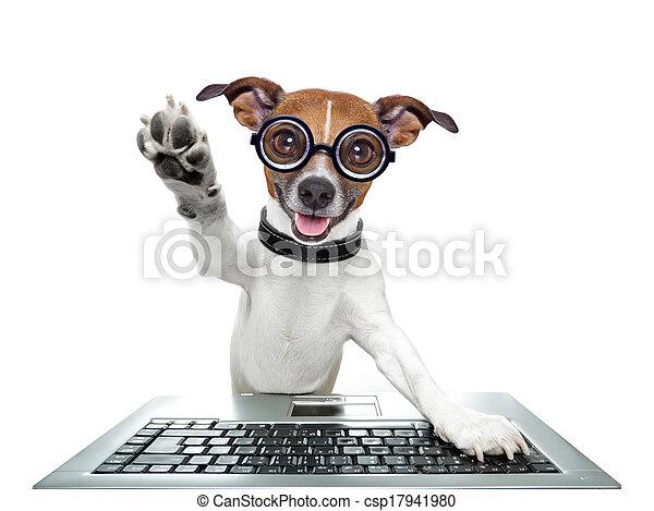 コンピュータ, 愚か, 犬 - csp17941980