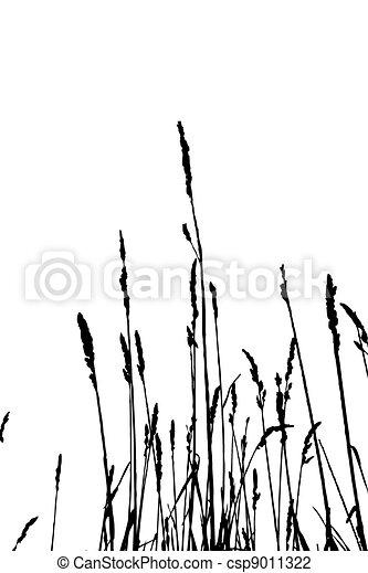 シルエット, ハーブ, イラスト, ベクトル, 背景, 白 - csp9011322