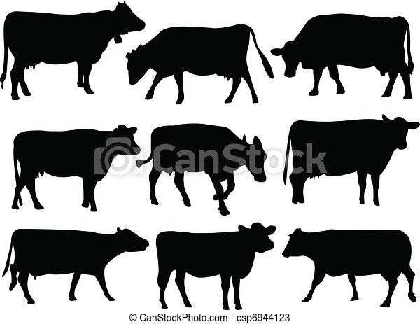 シルエット, 牛 - csp6944123