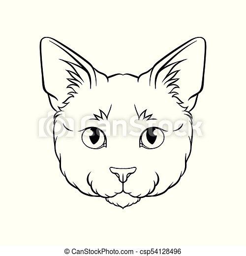 スケッチ, ベクトル, ペット, 頭, イラスト, 顔, ネコ, 黒, 動物, 引かれる, 白, 手 - csp54128496