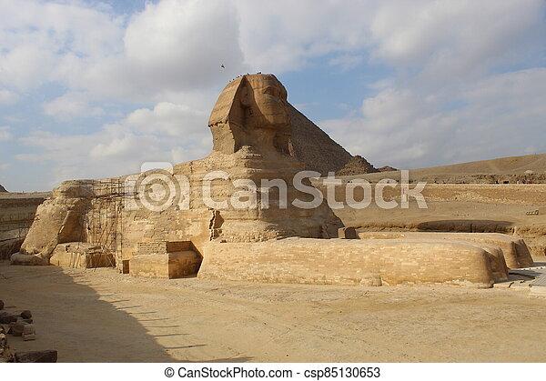 スフィンクス, フルである, ピラミッド, 体 - csp85130653