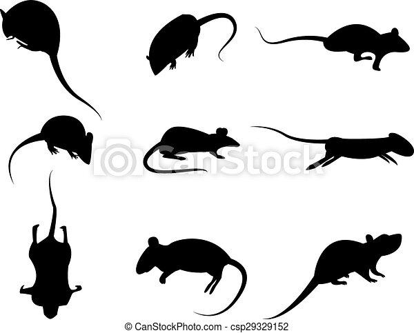 セット, シルエット, 隔離された, ネズミ, ベクトル, 黒い背景, アイコン, 白