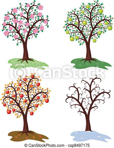 セット, リンゴの木, 4, ベクトル, 季節 - csp8497175