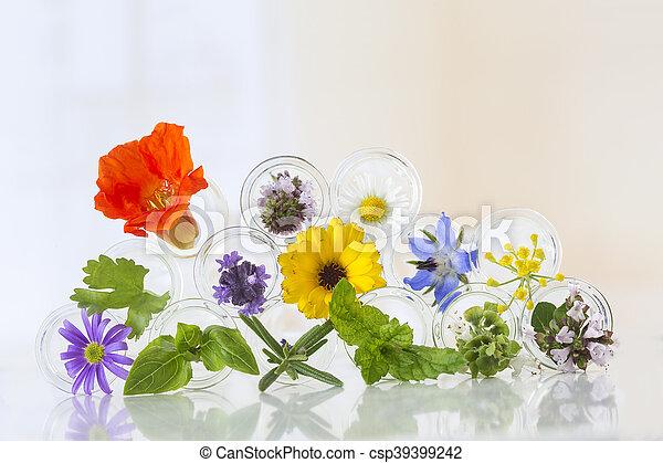 テスト管, 白い花, 隔離された - csp39399242