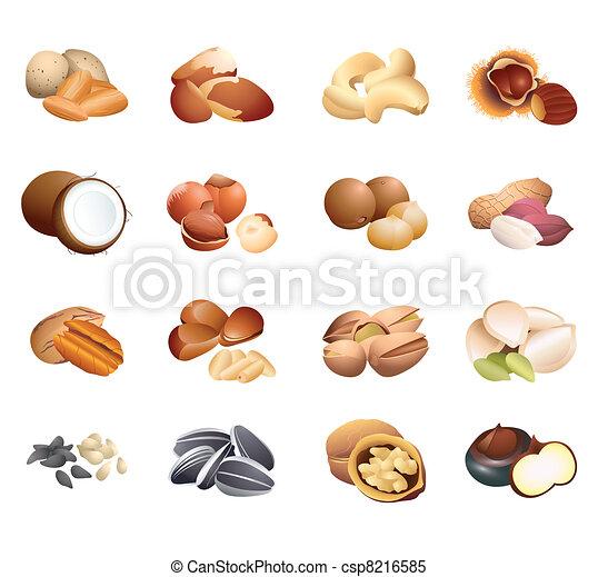 テーブル, カロリー, 種, ナット - csp8216585