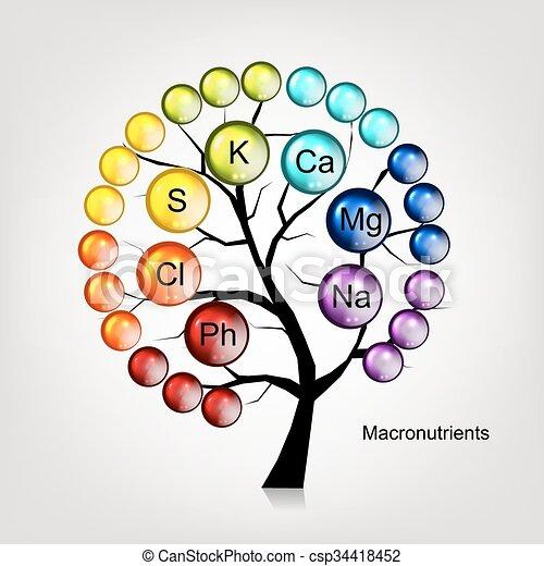デザイン, 概念, 木, ビタミン, あなたの - csp34418452