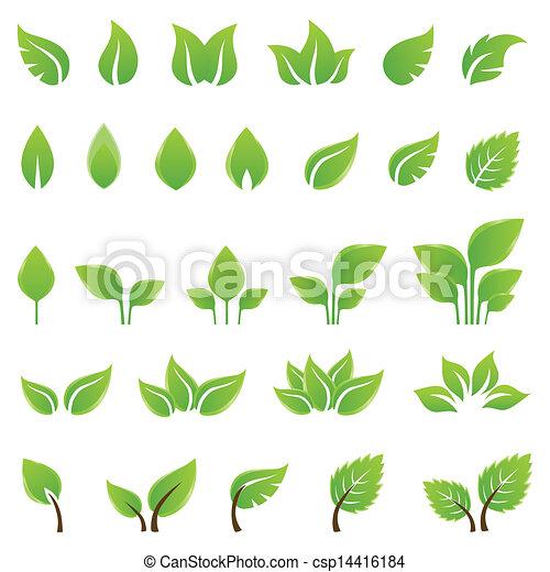 デザイン, 葉, セット, 緑, 要素 - csp14416184