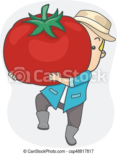 トマト 大きい 収穫 イラスト 人 トマト 巨大 彼の 農場 表す