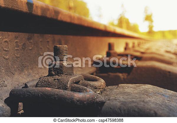 トラック, 位置を定められた, 鉄道, クローズアップ, 森林 - csp47598388