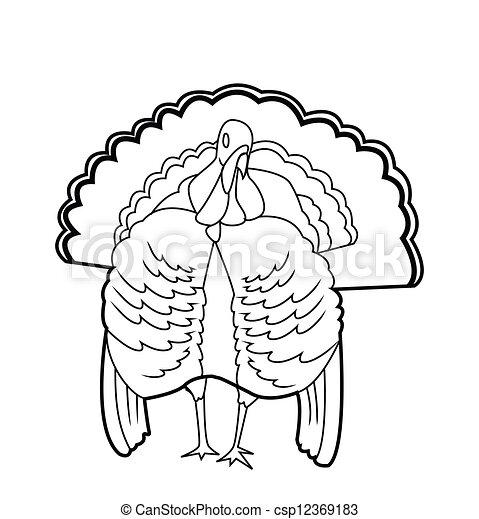 トルコ, 鳥 - csp12369183