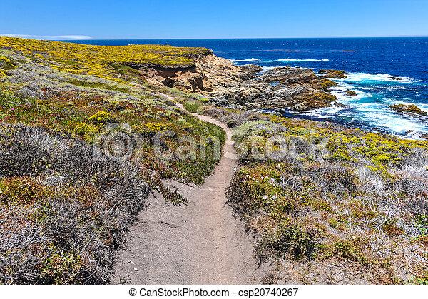 ハイキング, 公園, 太平洋, 州, garrapata, 道 - csp20740267
