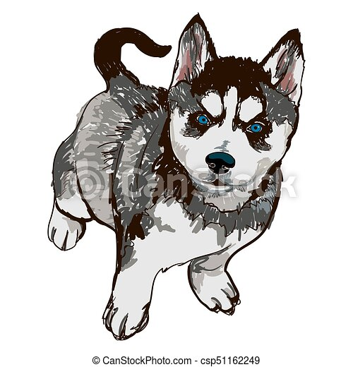 ハスキー 品種 犬 イラスト カラフルである 品種 犬 イラスト
