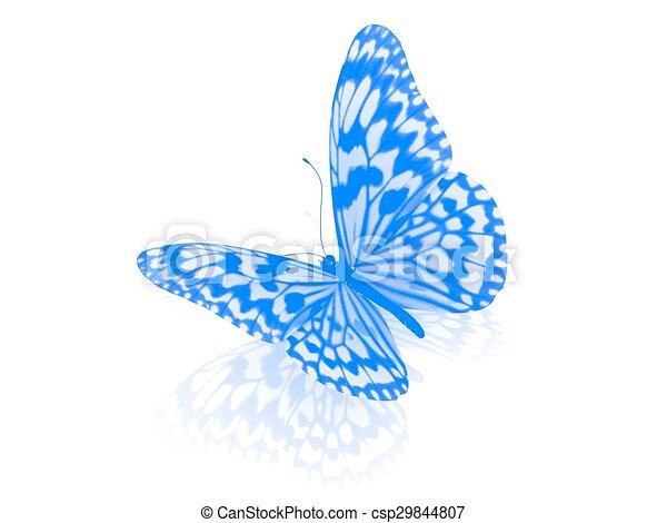 バックグラウンド。, 白, 隔離された, butterfly. - csp29844807