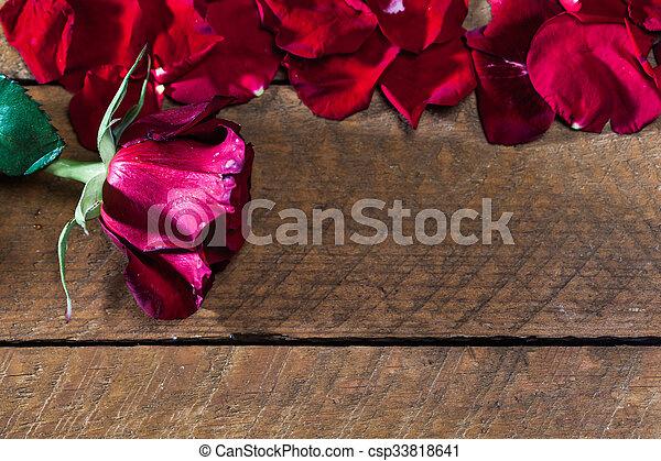 バラ, 木, 板, 花弁, 赤 - csp33818641
