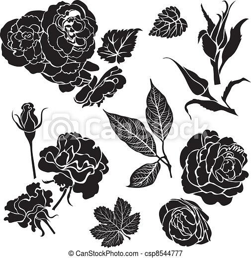 バラ, 花 - csp8544777