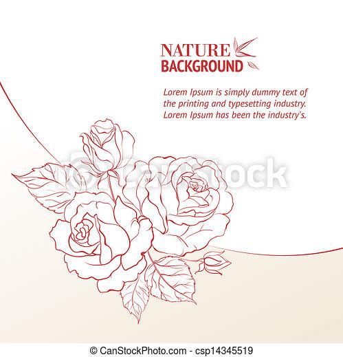 バラ, petals. - csp14345519