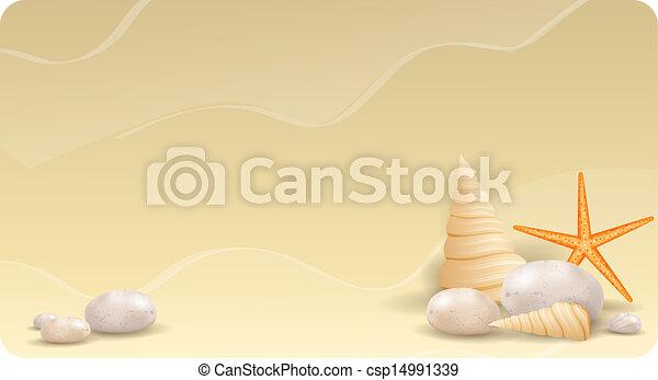 ヒトデ, 砂, 貝殻, 石, 小石, 旗 - csp14991339