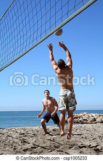 ビーチバレーボール - csp1005233
