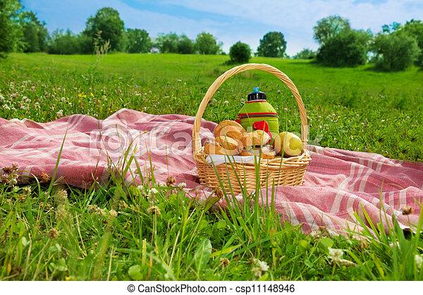ピクニック, 休日, 公園 - csp11148946