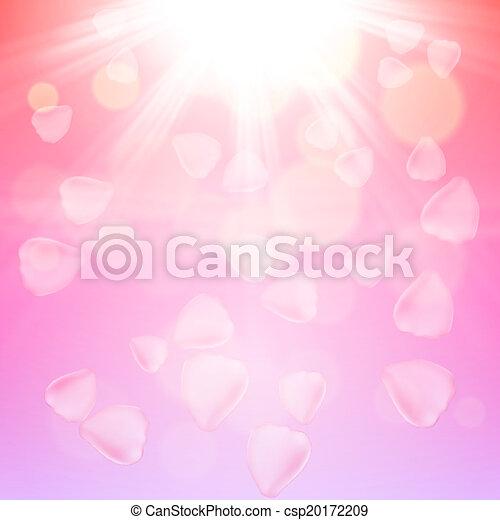 ピンクは 上がった, 背景, 花弁 - csp20172209