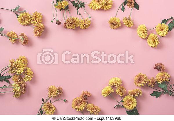 ピンク, パステル, pattern., バックグラウンド。, fall., golden-daisy, 花, 花, ボーダー - csp61103968