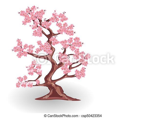 ピンク 桜の木 隔離された イラスト Sakura バックグラウンド