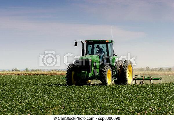 フィールド, 耕す, 農夫 - csp0080098