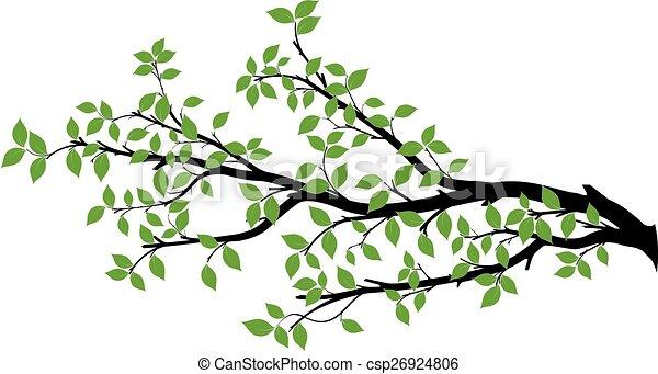 ベクトル, 木, シルエット, ブランチ, グラフィックス - csp26924806