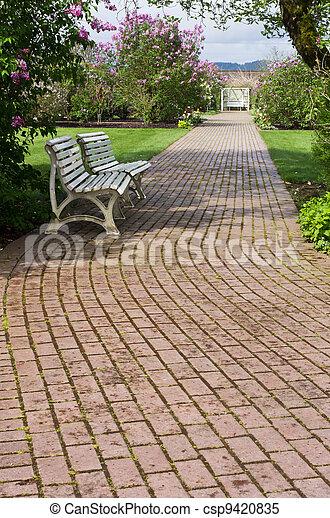 ベンチ, を過ぎて, 巻き取り, 道, 白, 庭 - csp9420835