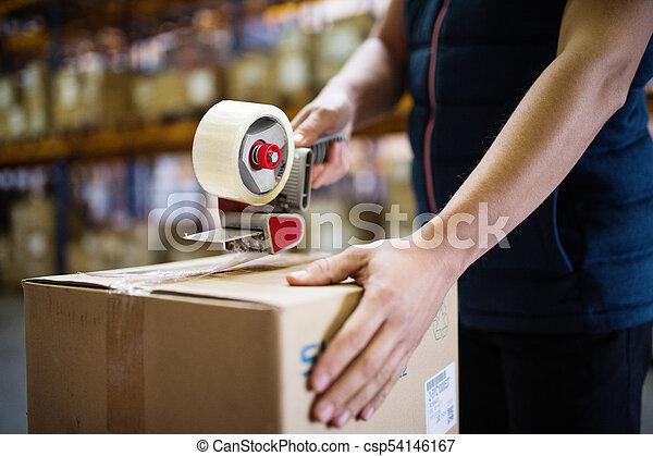マレ, 労働者, boxes., 倉庫, シーリング, ボール紙 - csp54146167