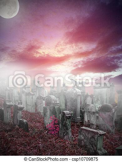 ミステリー, 霧, 古い, 墓地, 台無しにされる - csp10709875