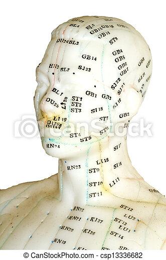 モデル, 刺鍼術 - csp13336682