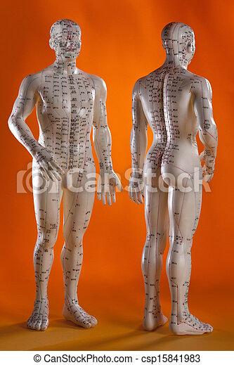 モデル, 選択肢, -, 薬, 刺鍼術 - csp15841983
