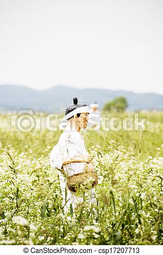 モデル, 韓国, 農夫, 南, 人形 - csp17207713