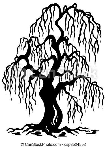 ヤナギの木, シルエット - csp3524552