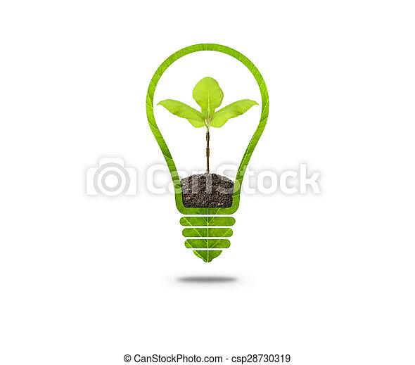 ライト, 中, 電球, 芽 - csp28730319