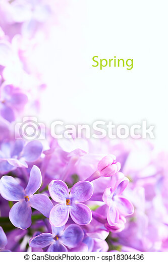 ライラック, 花, 芸術, 背景, ボーダー, 春, 美しい - csp18304436