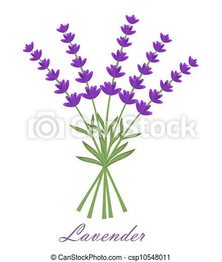 花 ベクトル ラベンダー イラスト Bouquet