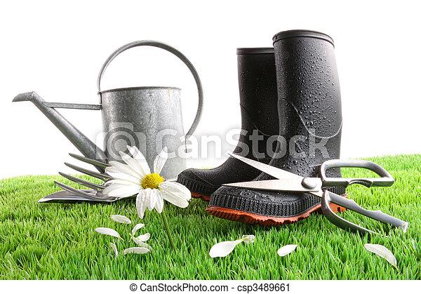 上水, 草, 罐頭, 靴子, 雛菊 - csp3489661