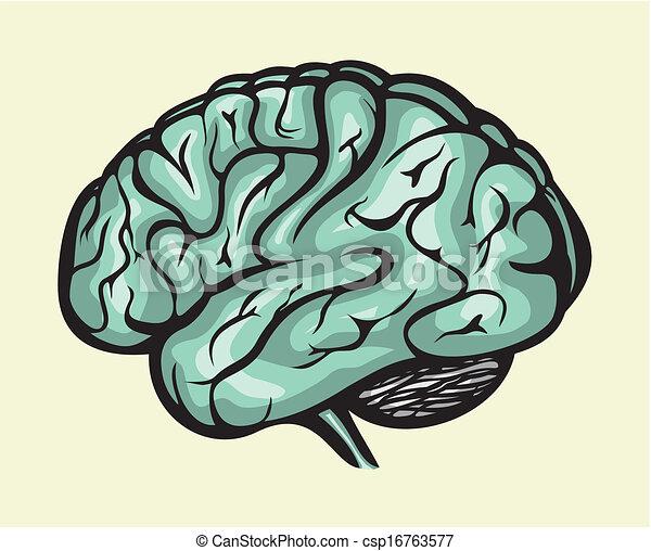 人間の頭脳 - csp16763577