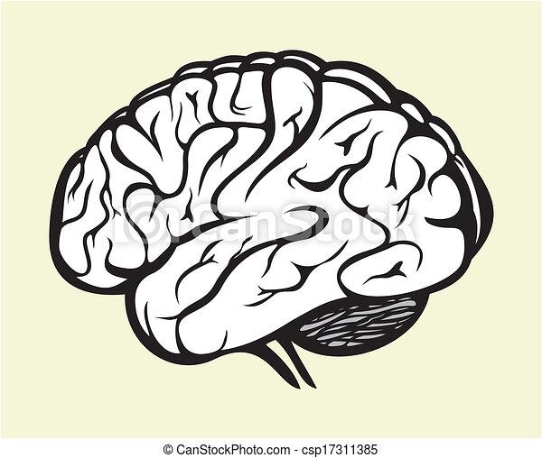 人間の頭脳 - csp17311385