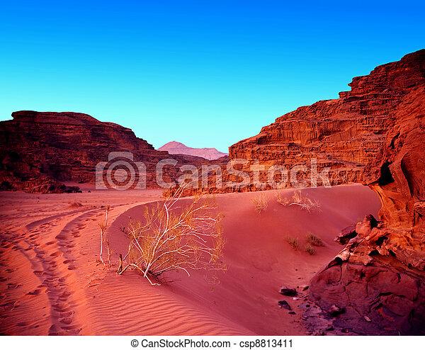 傍晚, 約旦, 干涸河道, rum., 沙漠 - csp8813411
