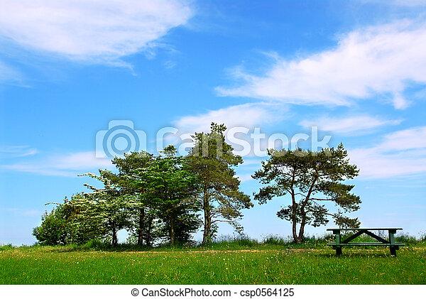 公园 - csp0564125