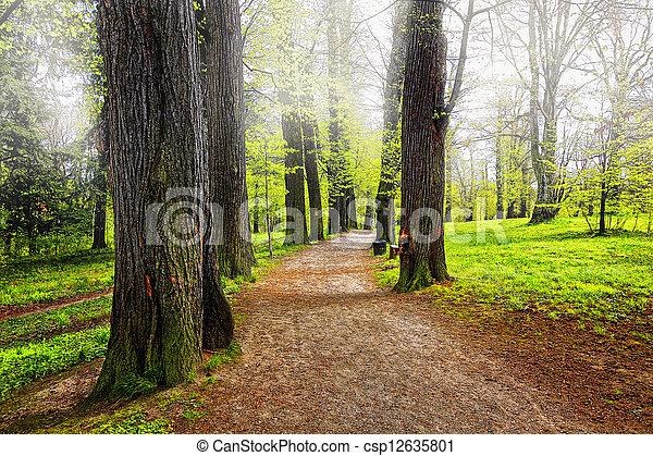公园, 胡同 - csp12635801