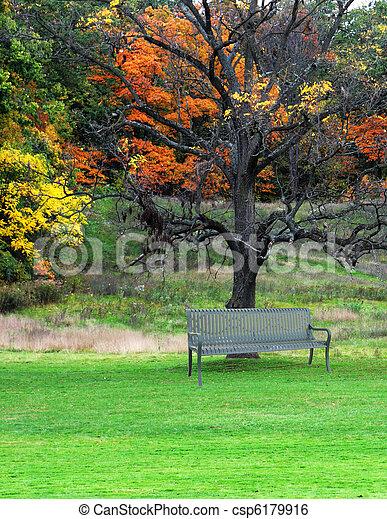 公園のベンチ - csp6179916